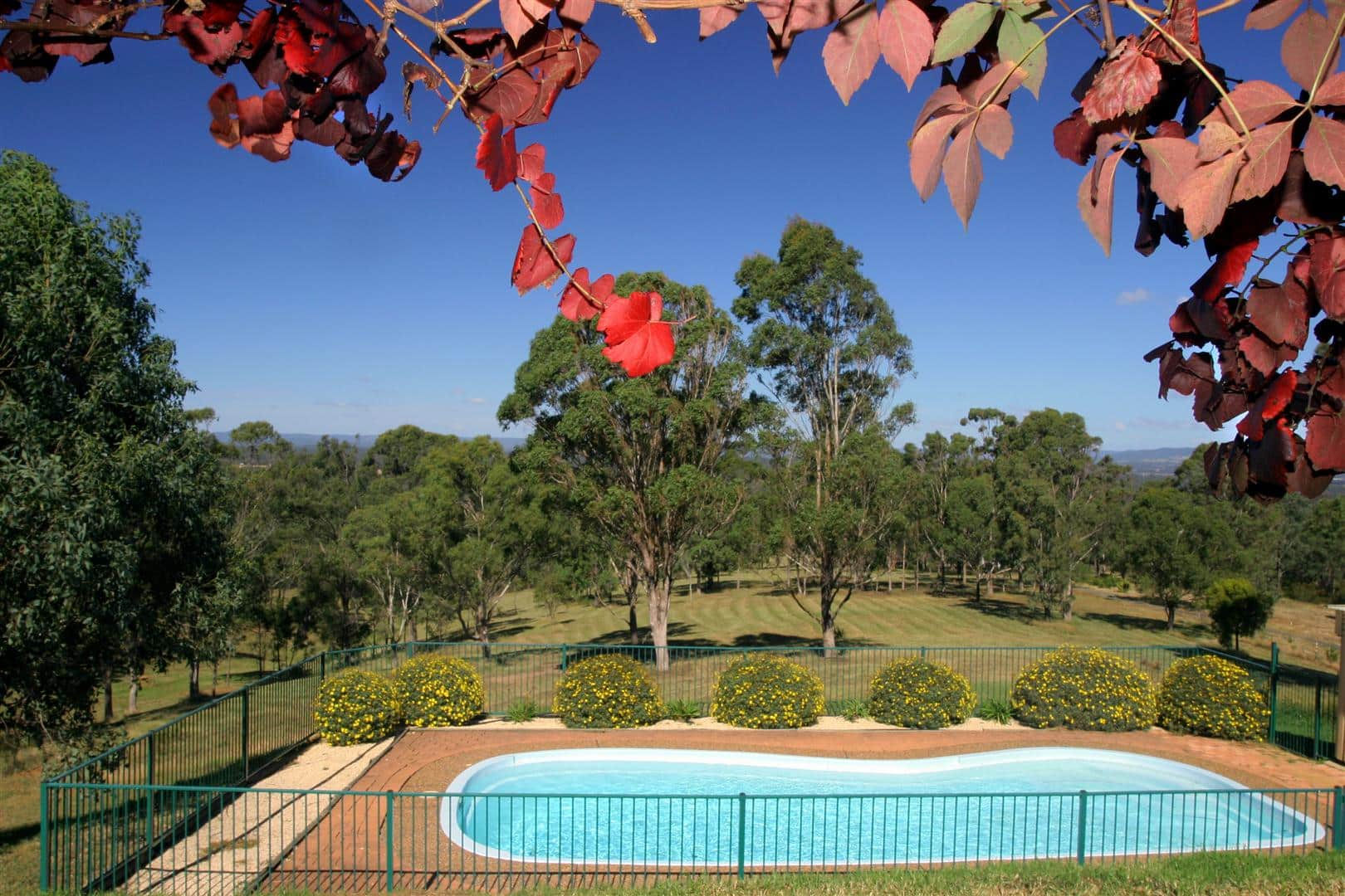 pool with countryside in the background