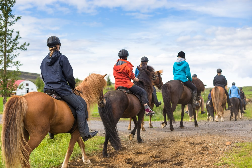 horse riding loverdale